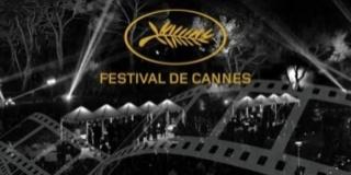 6 Lauréats présents à Cannes 2016